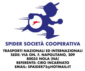Banner 300 x 250 – Spider – Post